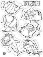 Shrinkles Collector Set - Assorted Accessories Fish